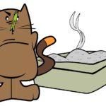 Comment savoir si N°1 - Comment savoir si la litière convient à mon chat ?