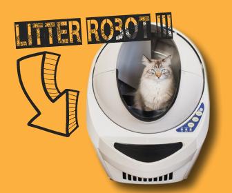 robot autonettoyant litter robot 3 la liti re pour chat du futur chat quotidien. Black Bedroom Furniture Sets. Home Design Ideas