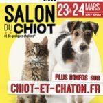 Le salon du chiot et du chaton - A venir à Saint André lez Lille (Nord)