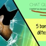 Quelques raisons de détester les chats ?