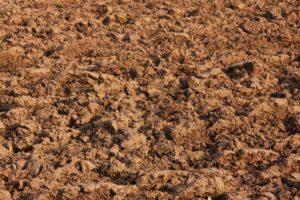 fabriquer litiere en terre