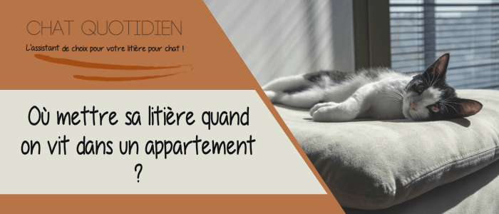 quelle litiere pour chat appartement