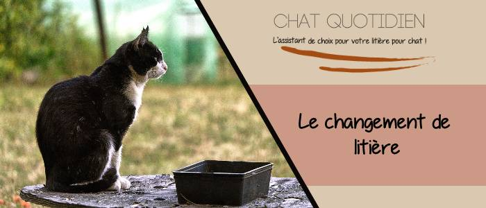 comment changer la litiere du chat